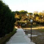 Passeggiata Narconon Alfiere